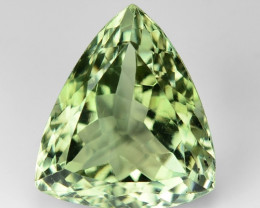 10.76 Ct Natural Prasiolite Top Quality Gemstone. GA 05