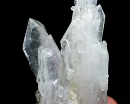 Lovely Damage free double termination Fedden Quartz cluster 220Cts-Pak