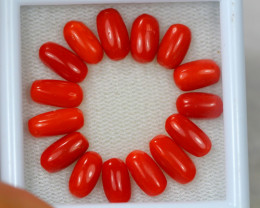 17.85ct Natural Italian Red Coral Mixed Size Lot V4469