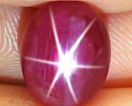 5.53 Carat Fancy Star Ruby - Gorgeous