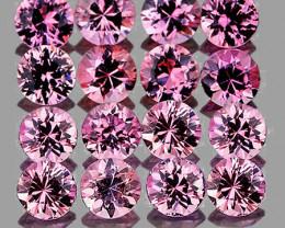2.20 mm Round 16 pcs Pink Sapphire [VVS]