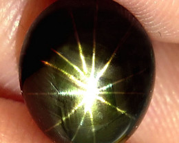 5.33 Ct 12 Ray Southeast Asian Star Sapphire - Gorgeous