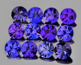 2.50 mm Round Machine Cut 12 pcs Unheated Violet-Blue Sapphire [VVS]