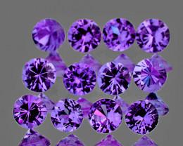2.60 mm Round Machine Cut 12 pcs Unheated Purple Sapphire [VVS]