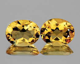 10x8 mm Oval 2 pcs 4.60cts Golden Yellow Citrine [VVS]
