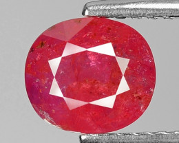 1.60 Ct Natural Ruby Unheated Mozambique Quality Gemstone. RB 07