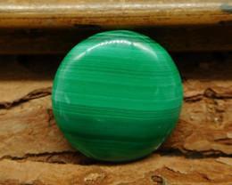 Round malachite cabochon (G0641)