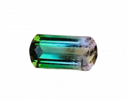 2.55 Carats Natural Bi Color Tourmaline Capsule Cut from Afghanistan