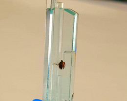 Aqua Combine Garnet Perfect Crystal 44.75 Cts *