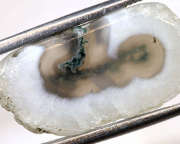 14  CTS  MOSS AGATE DRILLED PENDANT  NP-110