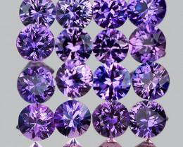 2.30 mm Round Machine Cut 16 pcs Unheated Violet-Blue Sapphire [VVS]
