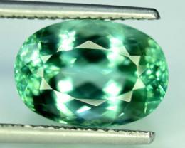 NR 11.30 cts Lush Green Spodumene Gemstone