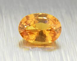 Natural Spessartite Garnet/ Fanta Garnet, untreated 1.08ct (01598)