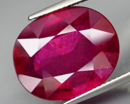 16.46 Cts . Top Quality Blood Red Natural Ruby Mozambique Gem