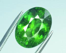 Top Grade 6.05 ct Apple Green AfghanTourmaline