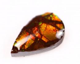 1.74ct Natural Canadian Ammolite / Ammonite Lot D113