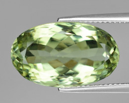 12.51 Ct Natural Prasiolite Top Quality Gemstone. PL 04