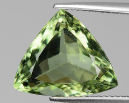 8.71 Ct Natural Prasiolite Top Quality Gemstone. PL 12