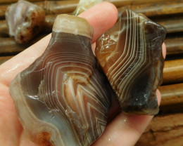 4pcs tiny botswana agate rough (G0802)