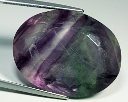 """103.10 ct """" Huge Gem"""" Oval Cut Bi-Color Fluorite"""