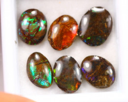 8.08ct Canadian Ammolite / Ammonite Lot D128