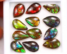 15.74ct Canadian Ammolite / Ammonite Lot D129