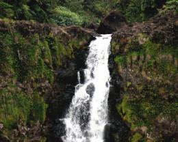 Top of 700 foot Akaka Falls, Big Island,. Hawaii.