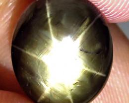 6.05 Carat Thailand Black Star Sapphire - Gorgeous