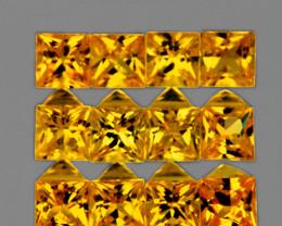 2.40 mm Square 12pcs 1.10cts Golden Yellow Sapphire [VVS]