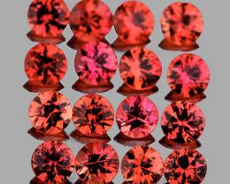 1.50 mm Round Machine Cut 1.07cts 50 pcs Pinkish Orange Sapphire [VVS]