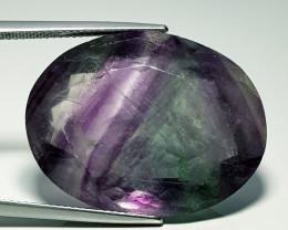 """72.75 ct """"  Huge Gem"""" Oval Cut Natural Bi - Color Fluorite"""