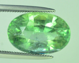 Top Grade 5.70 ct Amazing Lime Green Tourmaline~Afghanistan