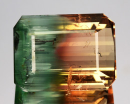 22.44 Cts Amazing Natural Bi-Color Tourmaline Octagon Mozambique