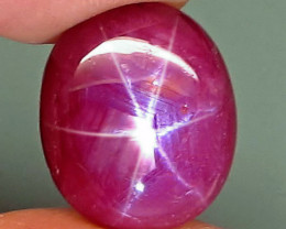 CERTIFIED - 13.45 Carat Star Ruby Cabochon - Gorgeous
