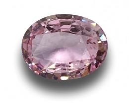 Natural unheated pink Sapphire |Loose Gemstone|New | Sri Lanka