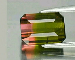 Unheated Bi color watermelon  Tourmaline rare stone