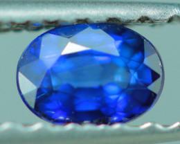 0.27 CT ROYAL BLUE NATURAL BLUE SAPPHIRE-MIX 21
