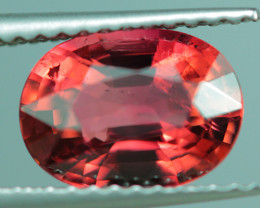 1.79 CT AAA Quality Natural Mozambique  Tourmaline  - PT306