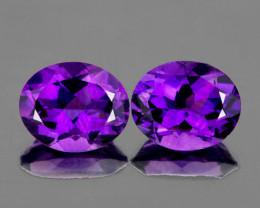 11x9 mm Oval 2 pcs 6.00cts Purple Amehyst [VVS]