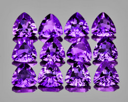 4.00 mm Trillion 24 pcs 5.20cts Purple Amethyst [IF-VVS]