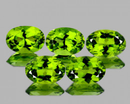 7x5 mm Oval 5 pcs 4.00cts Green Peridot [VVS]