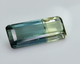 0.91 Crt Bi-Color Tourmaline Faceted Gemstone (R29)
