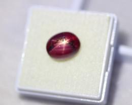6.44Ct 6Rays Star Ruby Lot LZ3085