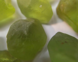 50Ct Natural Peridot Facet Rough Parcel