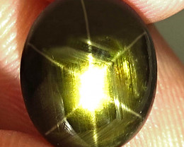 7.05 Carat Natural Thailand Black Star Sapphire - Gorgeous