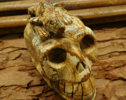Natural picture jasper carved skull with lizard decoration (G0975)