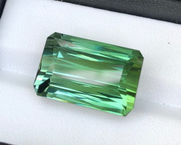23.82 Ct   Tourmaline  Loop Clean FL