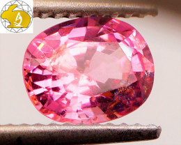 DISTINCT! Unheated 1.38 CT Pink Mahenge Spinel $450 FREE DHL Ship!