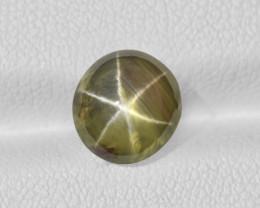 Fancy Star Sapphire, 3.89ct - Mined in Sri Lanka | Certified by IGI