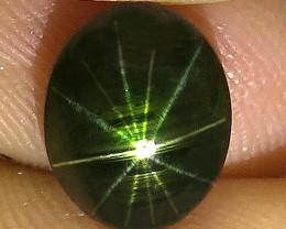 3.25 Carat 12 Ray Thailand Black Star Sapphire - Gorgeous
